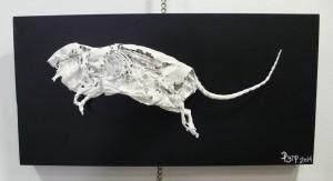 Cadáver de rata secado y esmaltado.